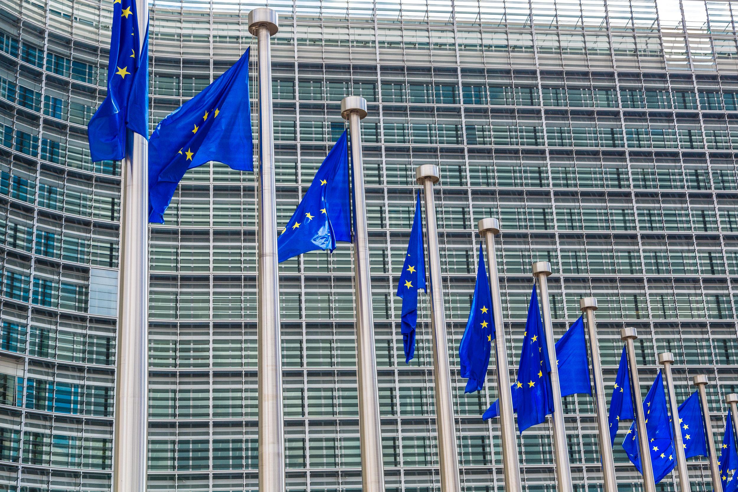 Copy of European flags  in Brussels