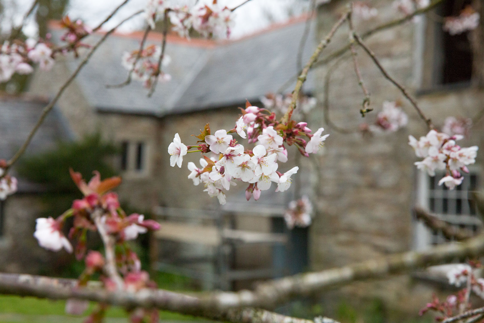 The Old Vicarage, Cornwall