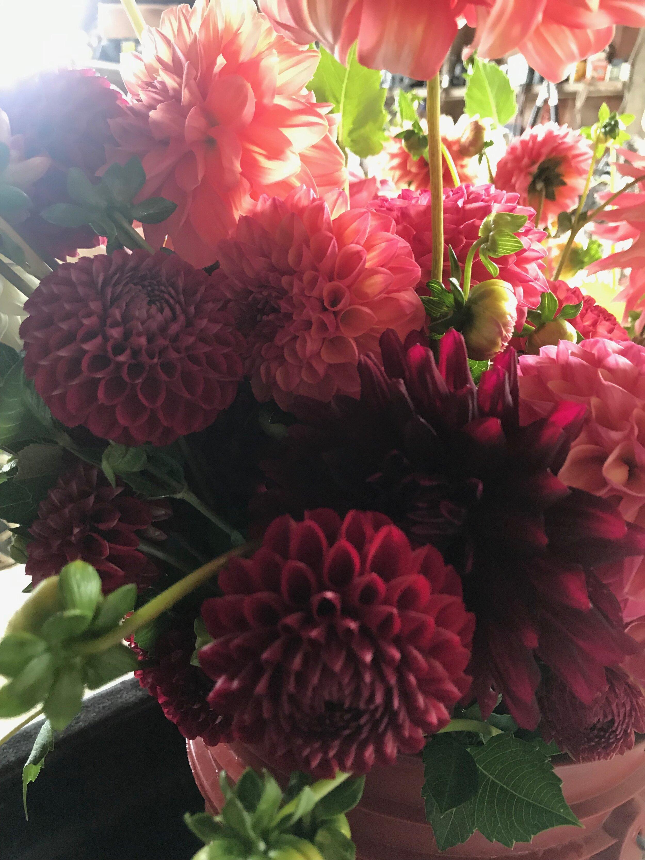 Flower Bucket Share 4 Weeks Of Bulk Flowers Markristo Farm