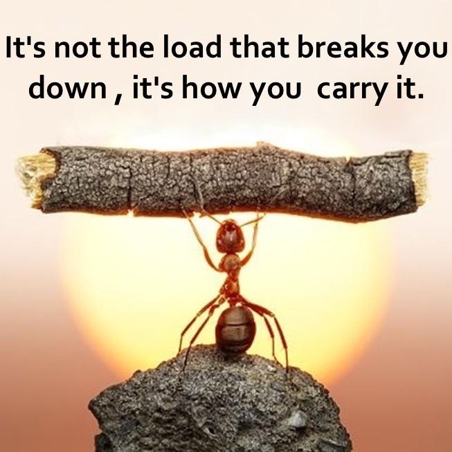 lighten your load.jpg