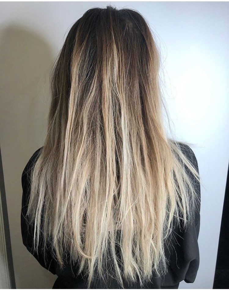 Model Hair Before