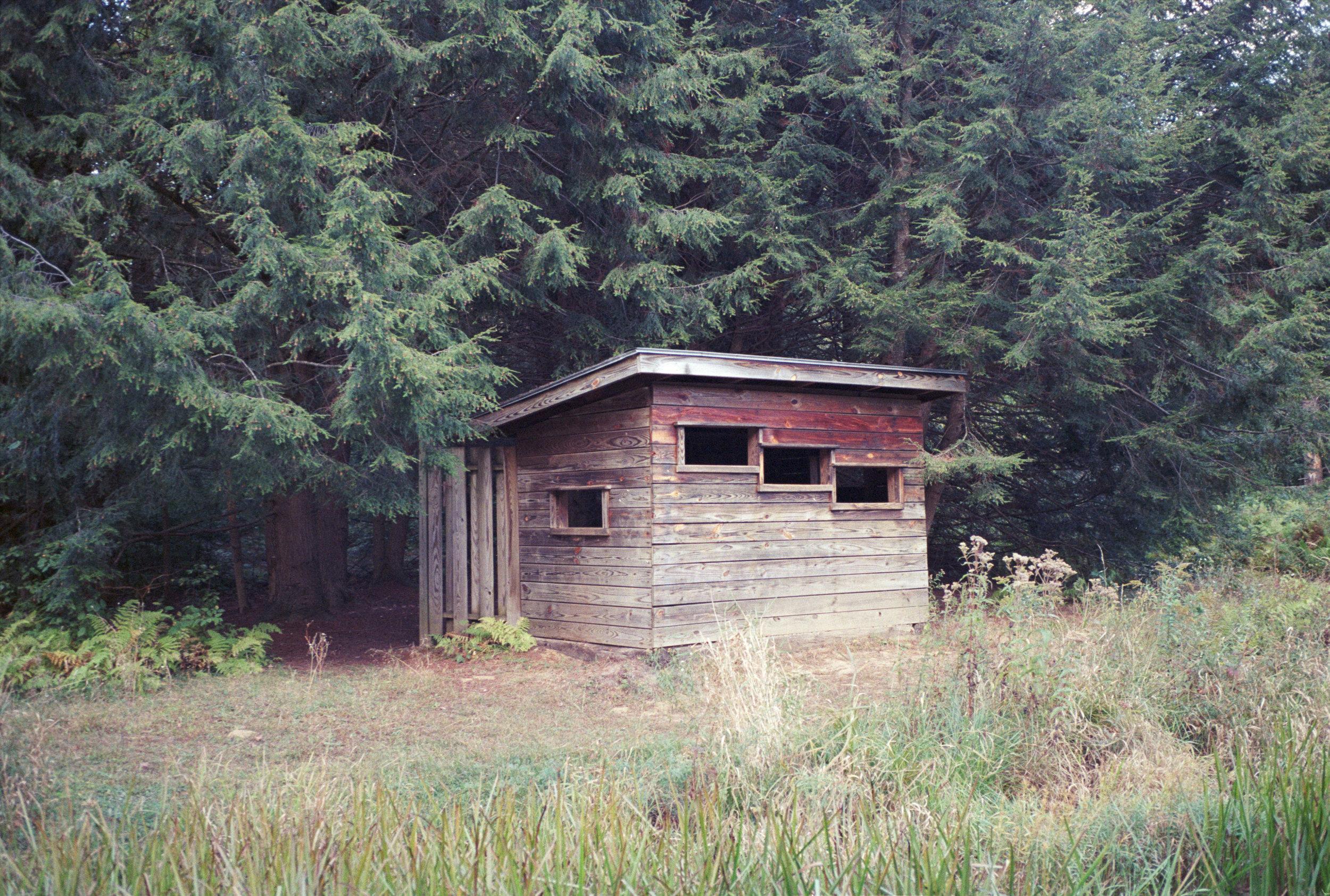 shack2.jpg