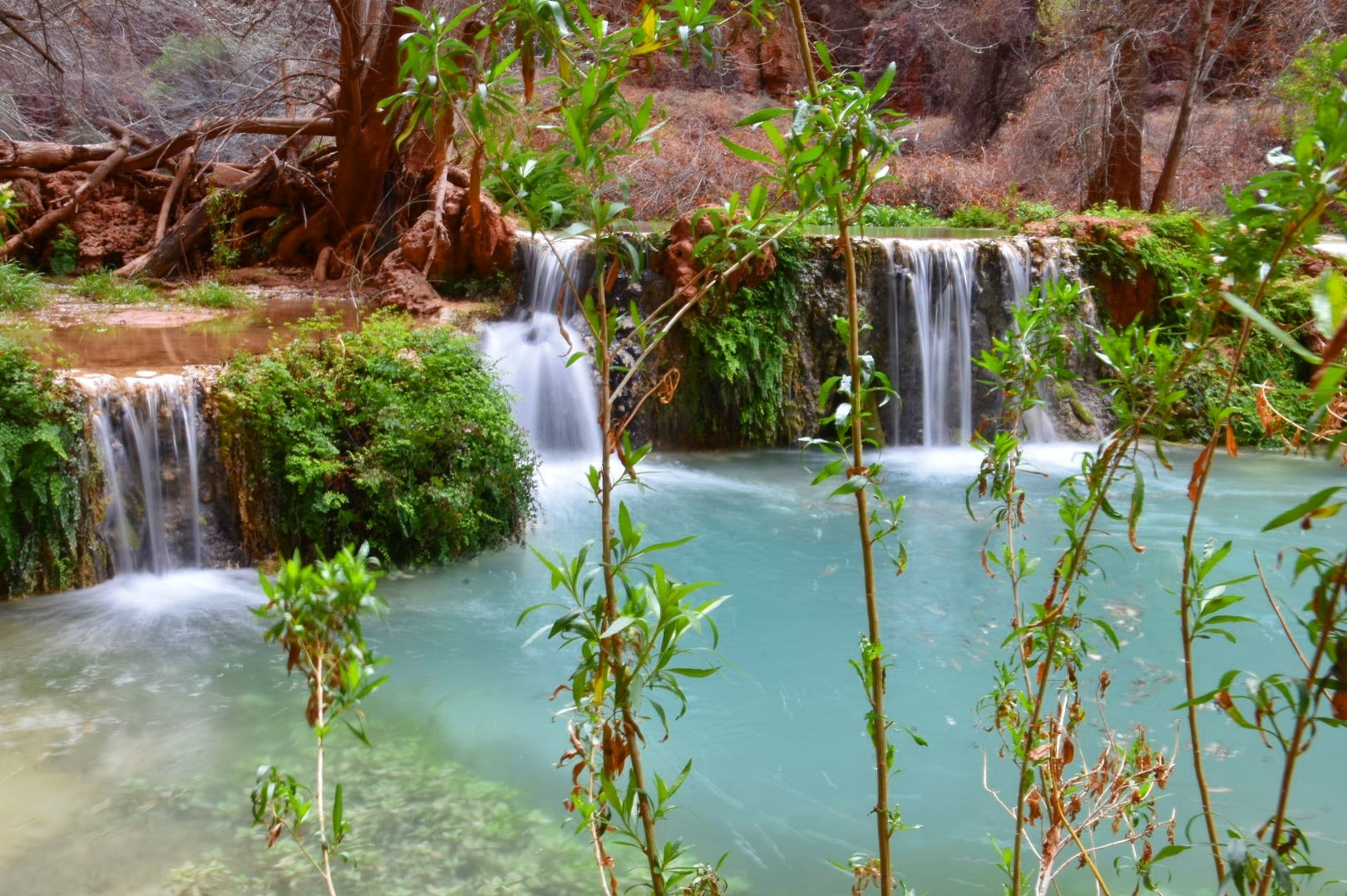 The forever changing Havasu creek.