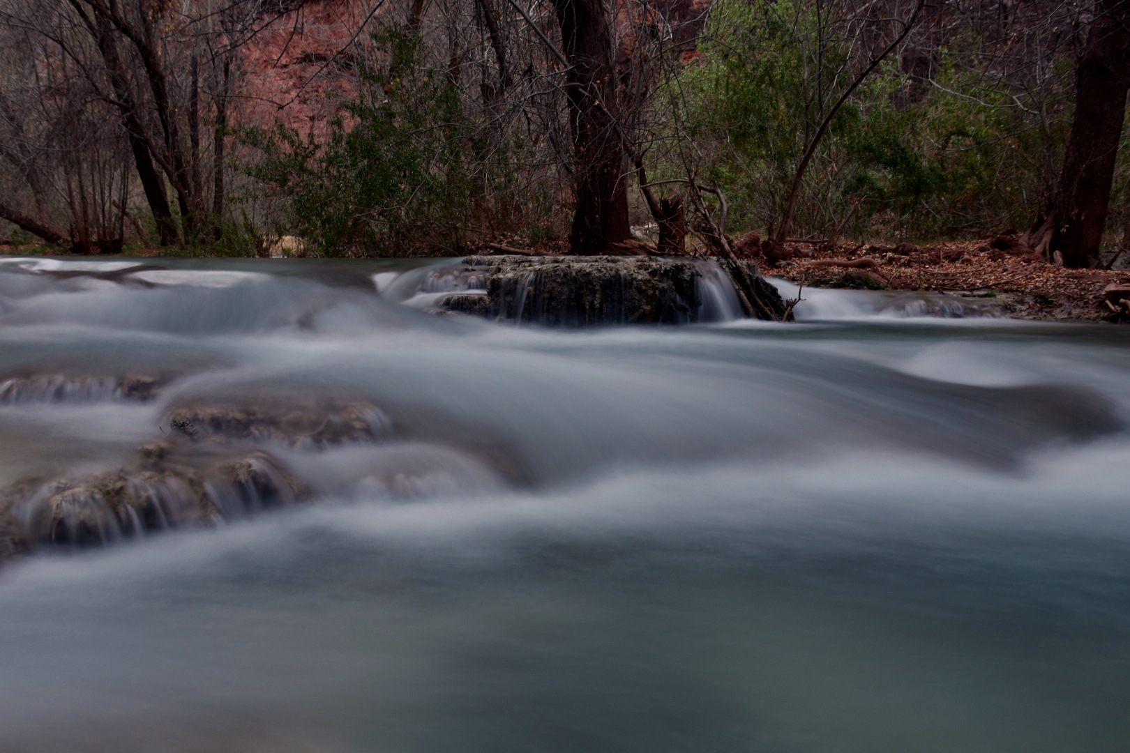 Havasu Creek, 3ft. from our tent :)