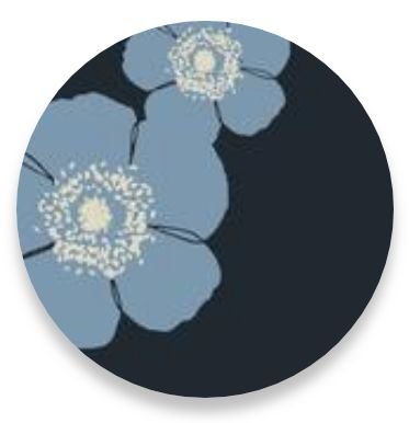 Poppy Steel Blue-Grey