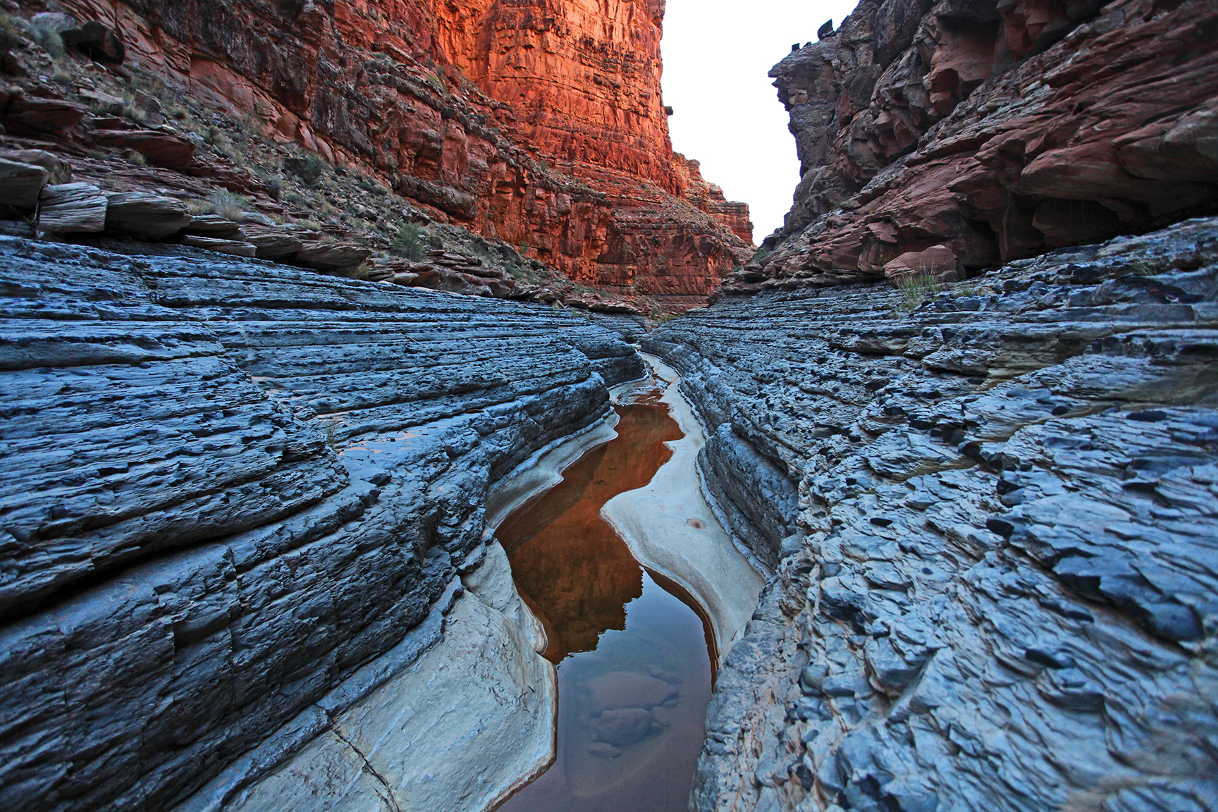 The spring-fed waters of Dark Canyon. Photo by Stephen Eginoire