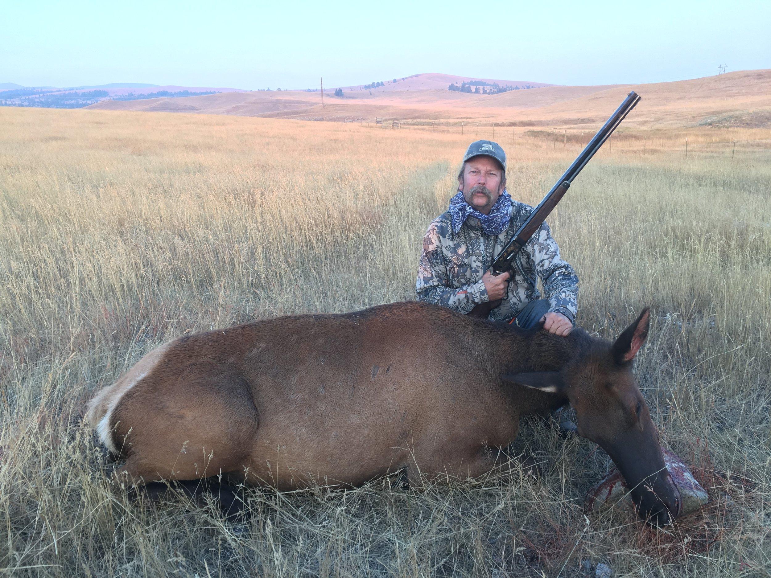Cow Elk Hunts