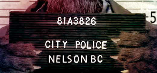 Arrested in Nelson