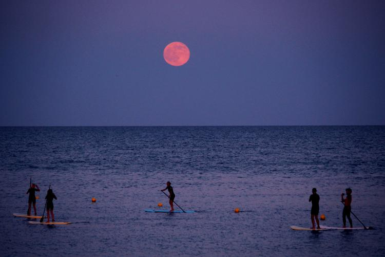 Lotus-jos-yoga-strawberry-moon.jpg