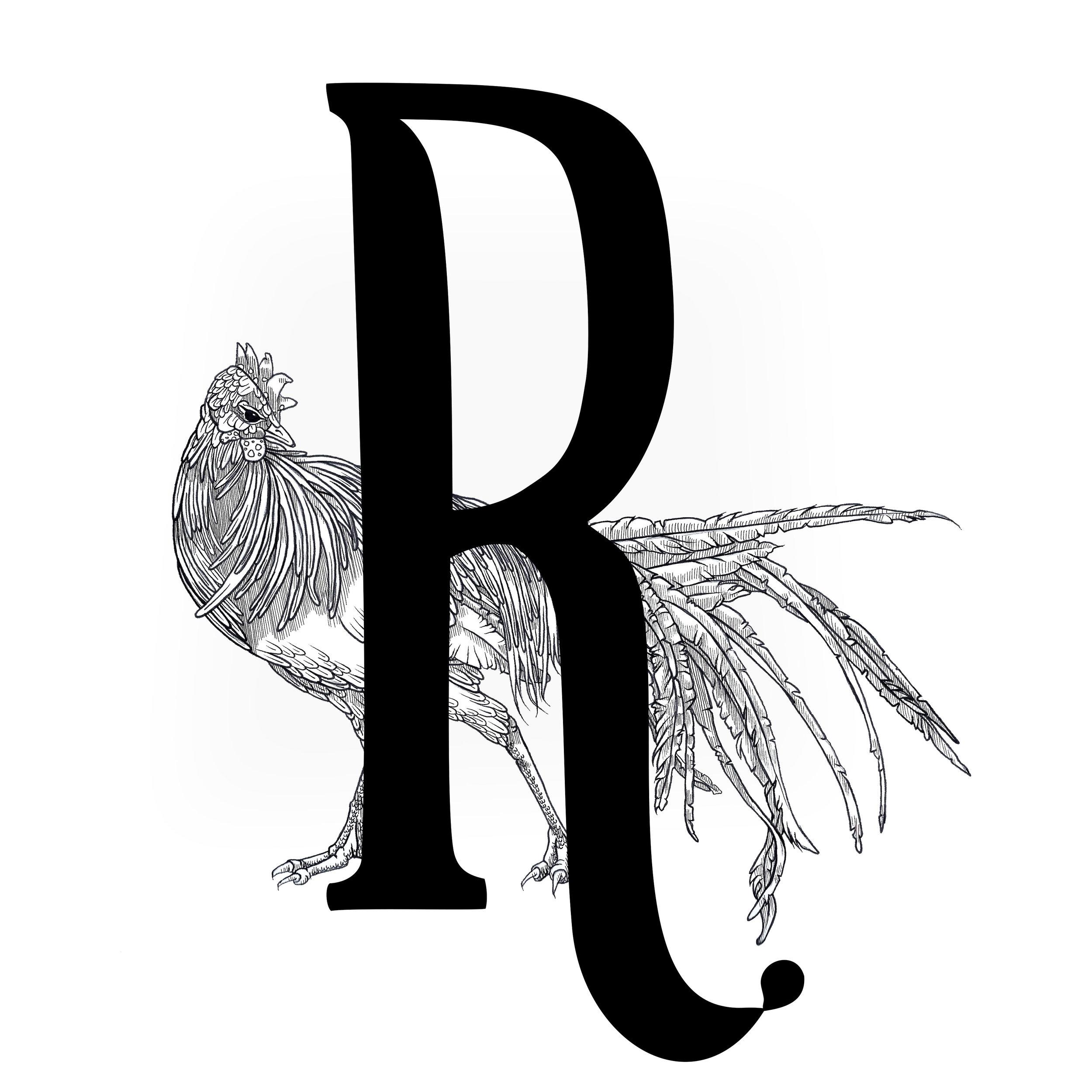 Artsy-Rooster-Studios-2019-Logo-c-Kathryn-Robertson.jpg