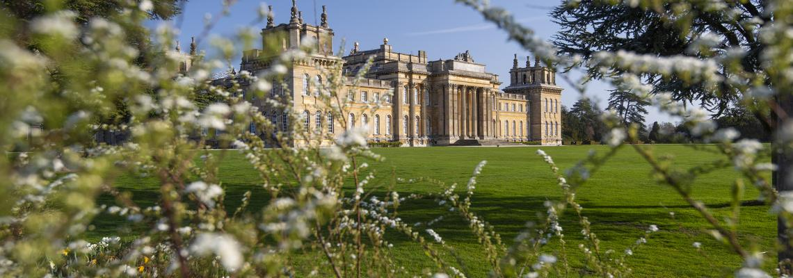 "catch us at… - This summer we're back at our favourite, Blenheim Palace, for the following shows:- Blenheim Palace Flower Show - Friday 21st-Sunday 23rd June""This wonderful three day show will be opened by TV's George Clarke on Friday 21st June 2019 and will celebrate the very best of gardening, home and lifestyle. It is packed with inspiration, flowers and plants and everything you need for your home and garden. The show is a celebration of lifestyle and the great outdoors.""- BBC Countryfile Live - Thursday 1st-Sunday 4th June""BBC Countryfile Live is returning to the spectacular grounds of Oxfordshire's Blenheim Palace from 1-4 August 2019. Representing the best of the British countryside across four days, Countryfile Live is guaranteed to be one of this summer's best days out."""