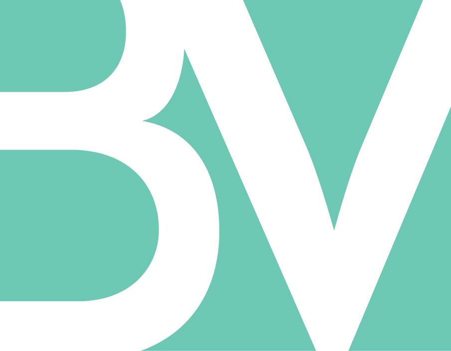 BigVision-BV_Mark-Teal.jpg