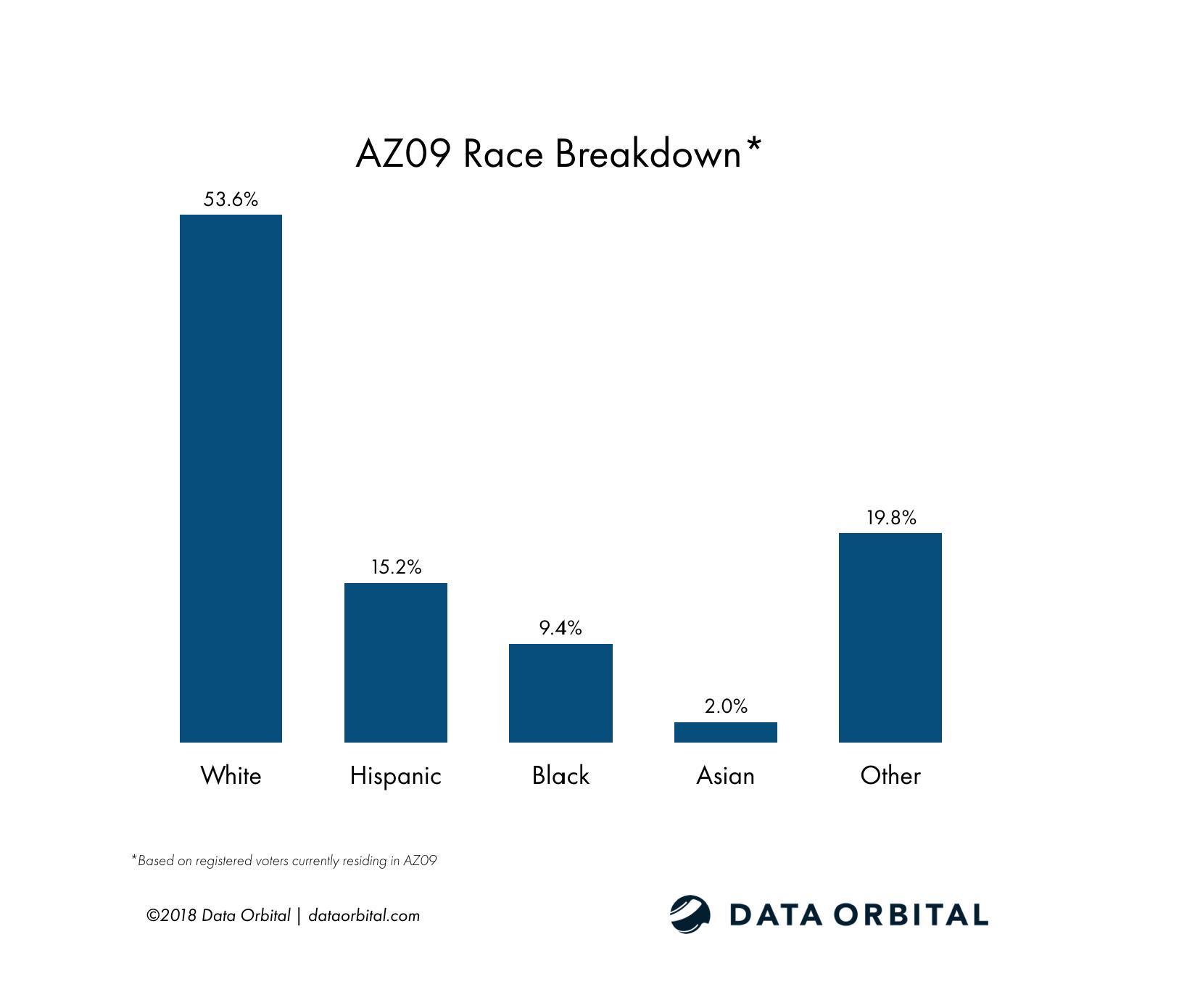 AZ09 District Profile Race Breakdown