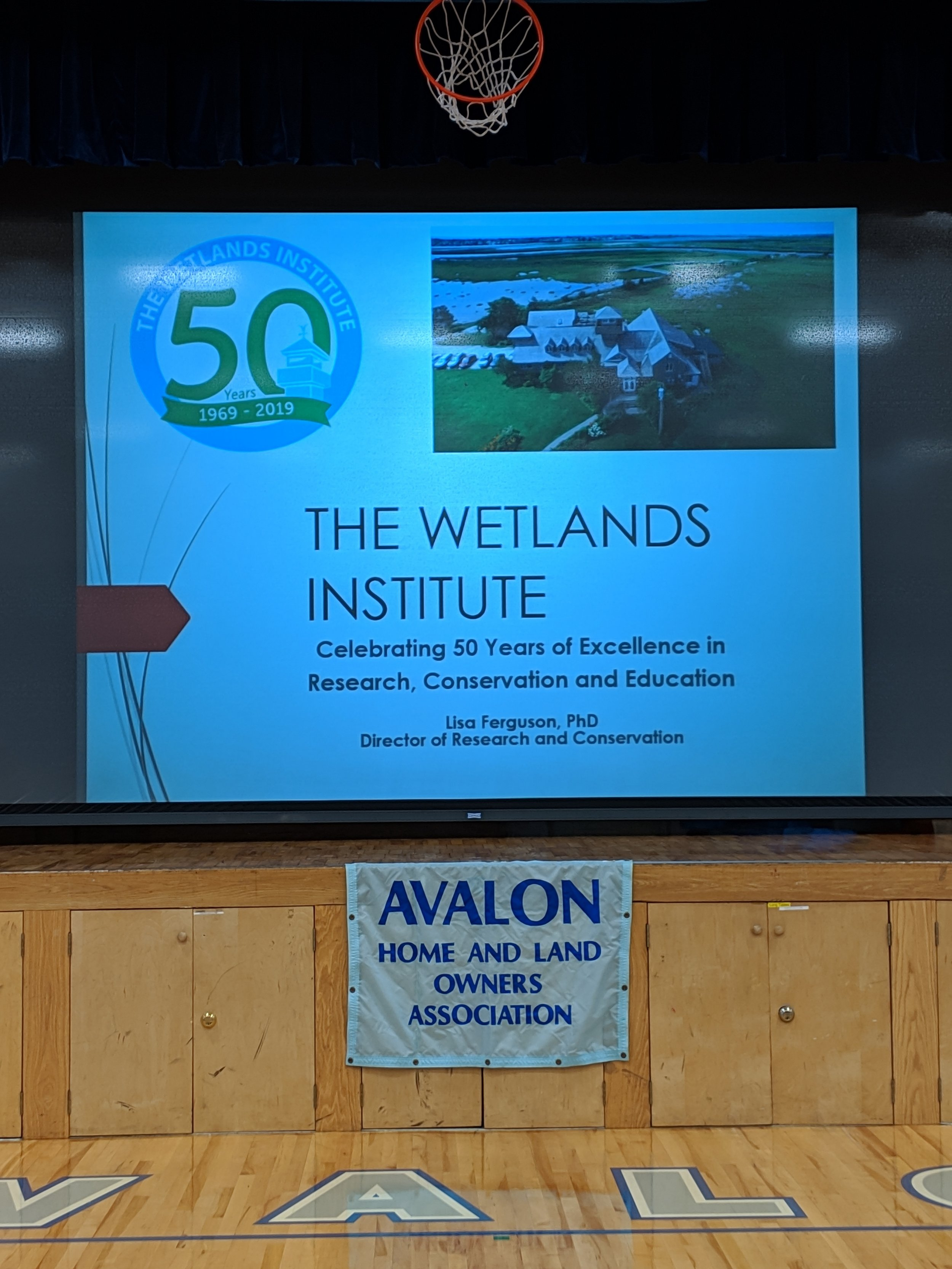 Celebrating 50 Years of The Wetlands Institute