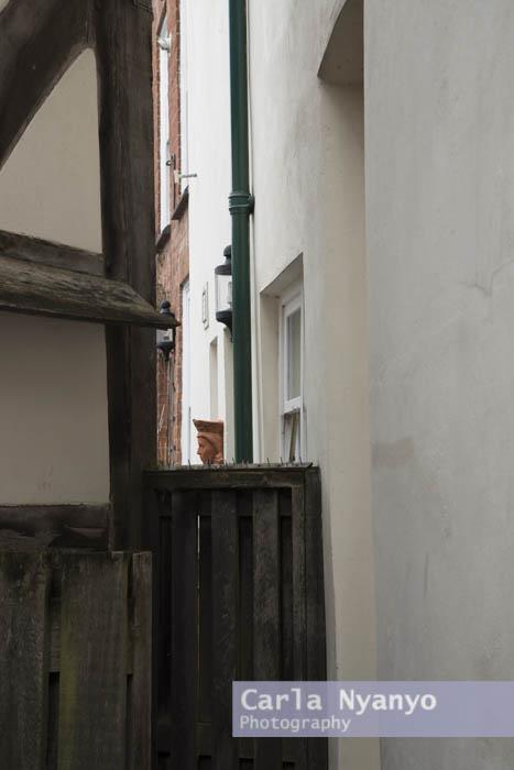 ledbury-13.jpg