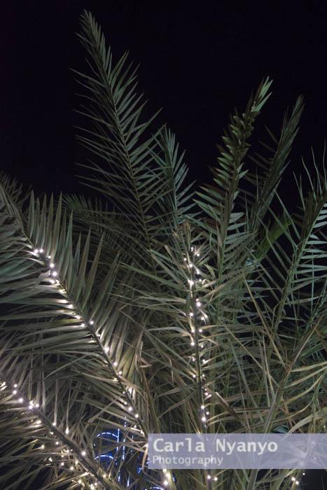 dubai_by_night-5.jpg