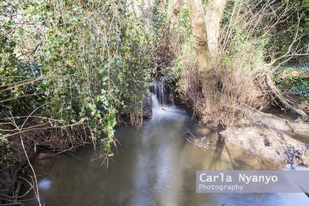 river_sherbourne-142.jpg