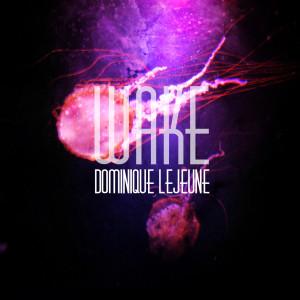 DOMINIQUE LEJEUNE - WAKE