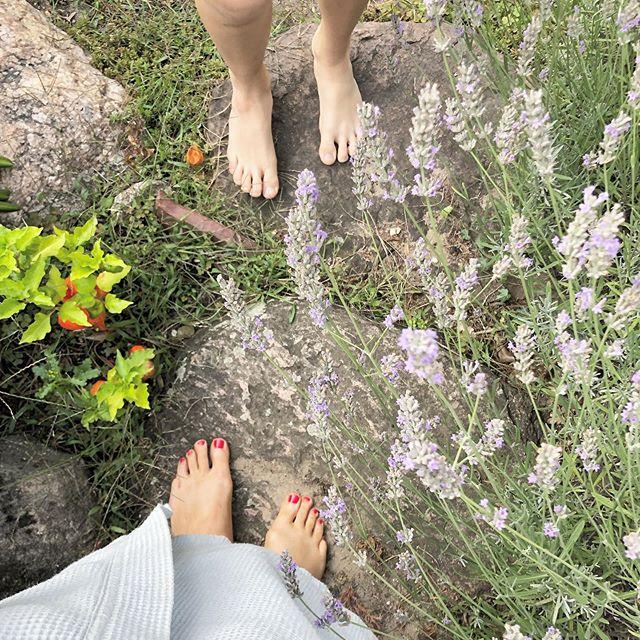 Morgens im Garten 🌿💚 #bestlife #stille #entschleunigung