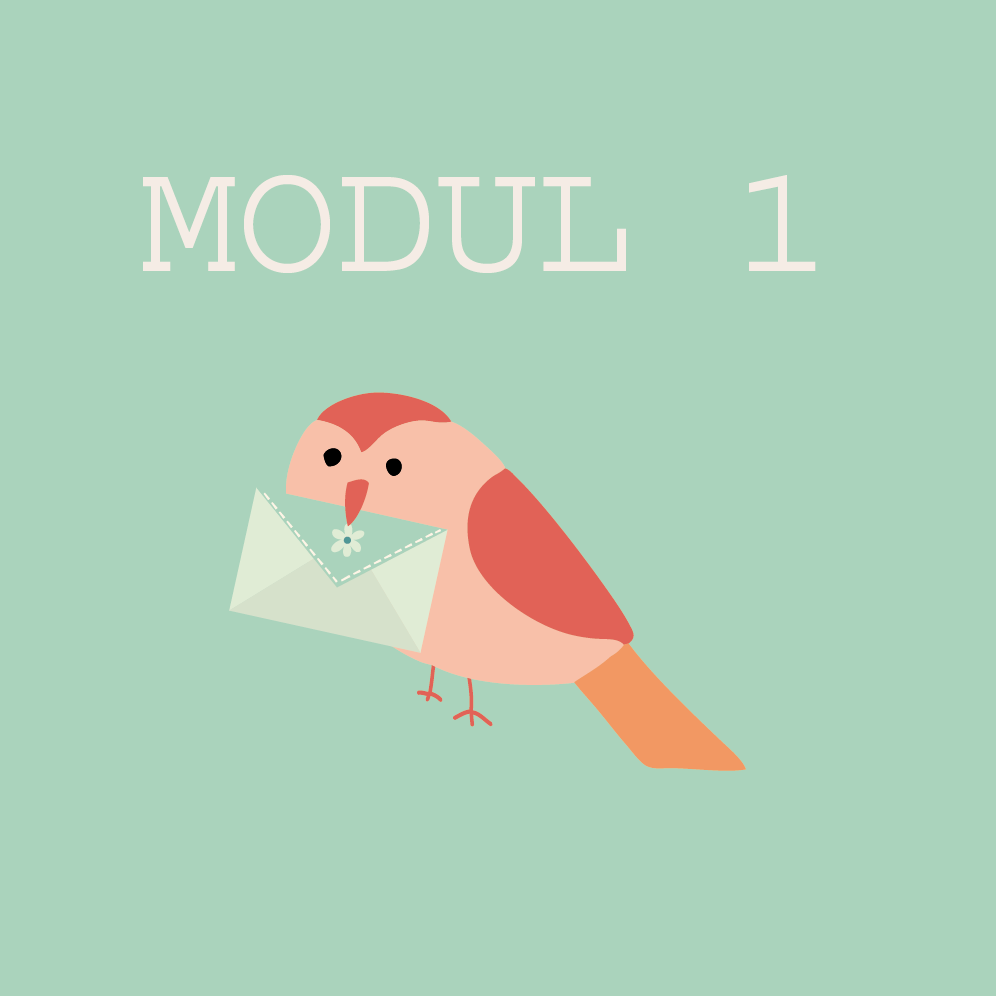 modul1.png