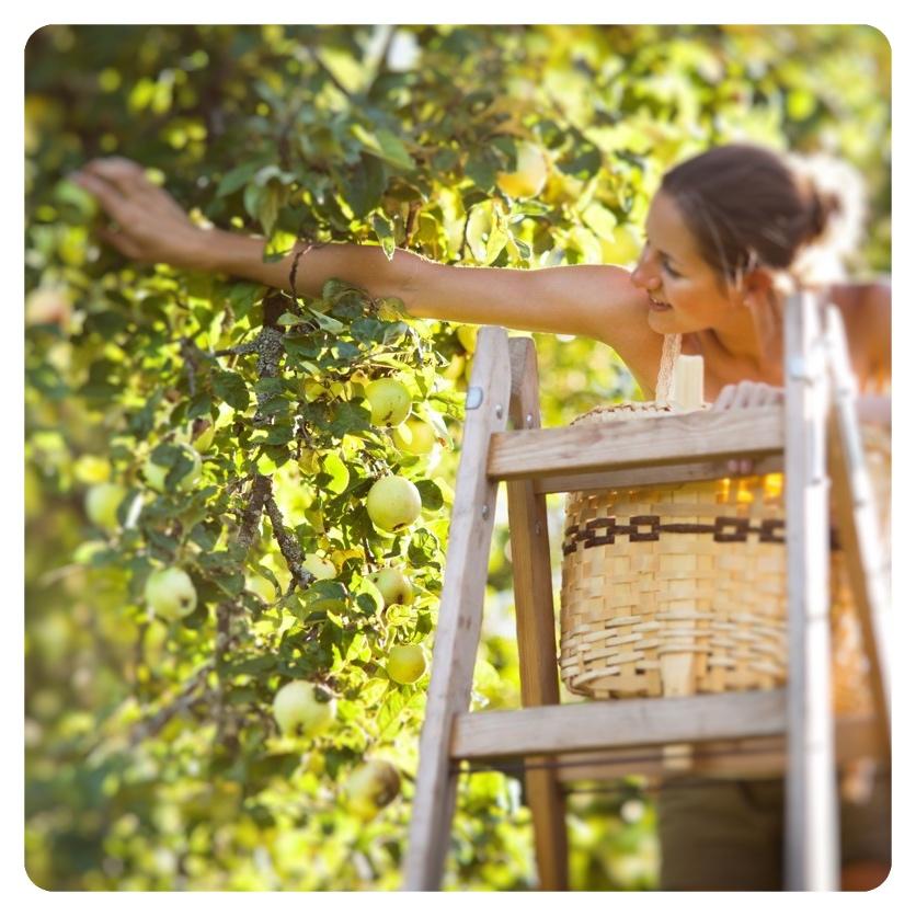 Girl on ladder_Fotor.jpg