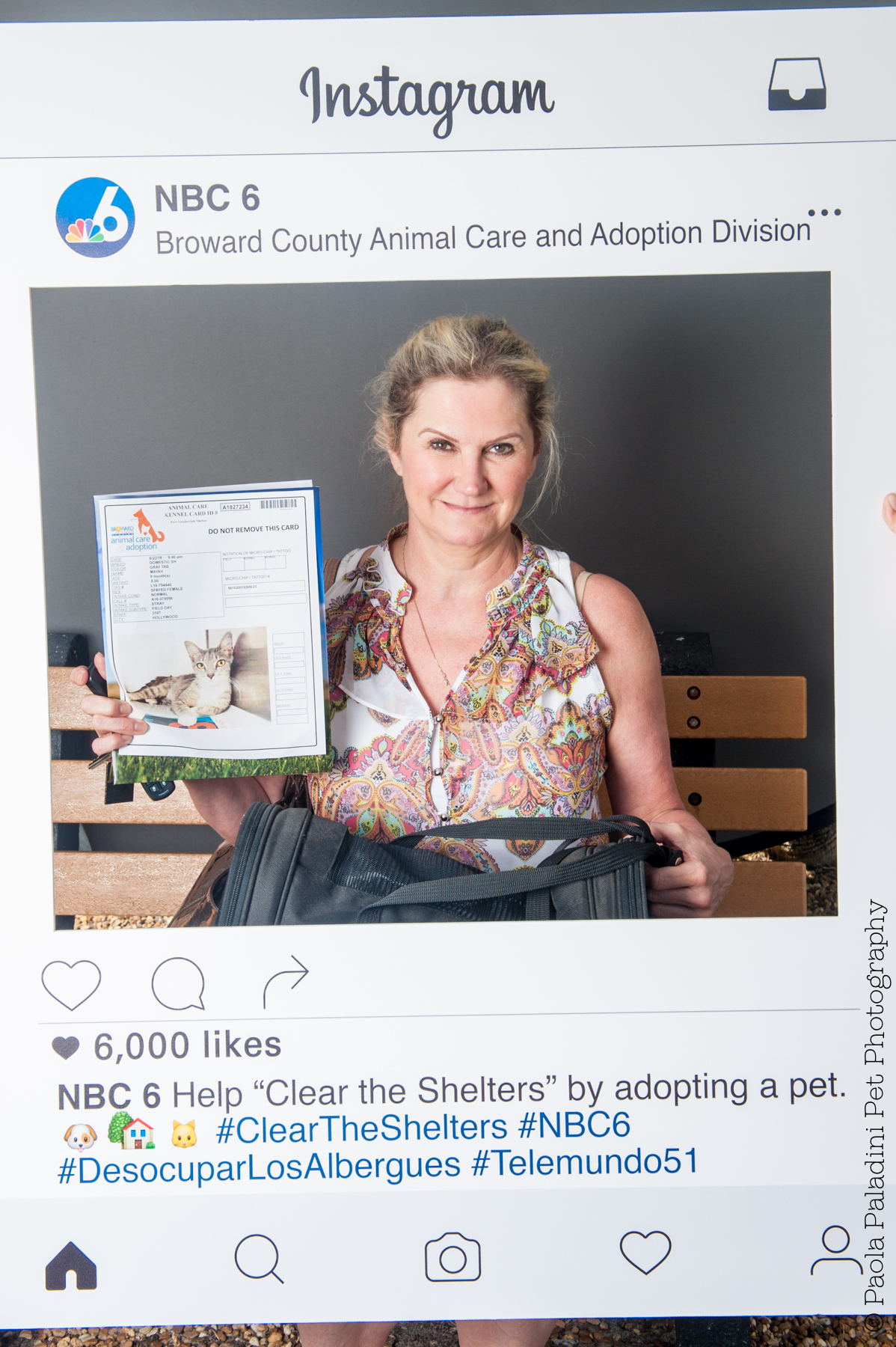 20160723-cleartheshelters-8.jpg