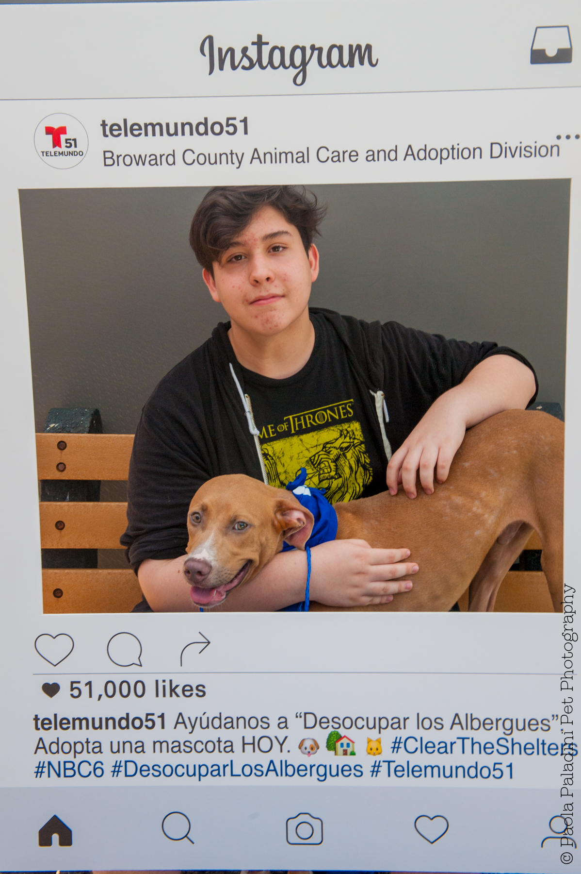 20160723-cleartheshelters-10.jpg