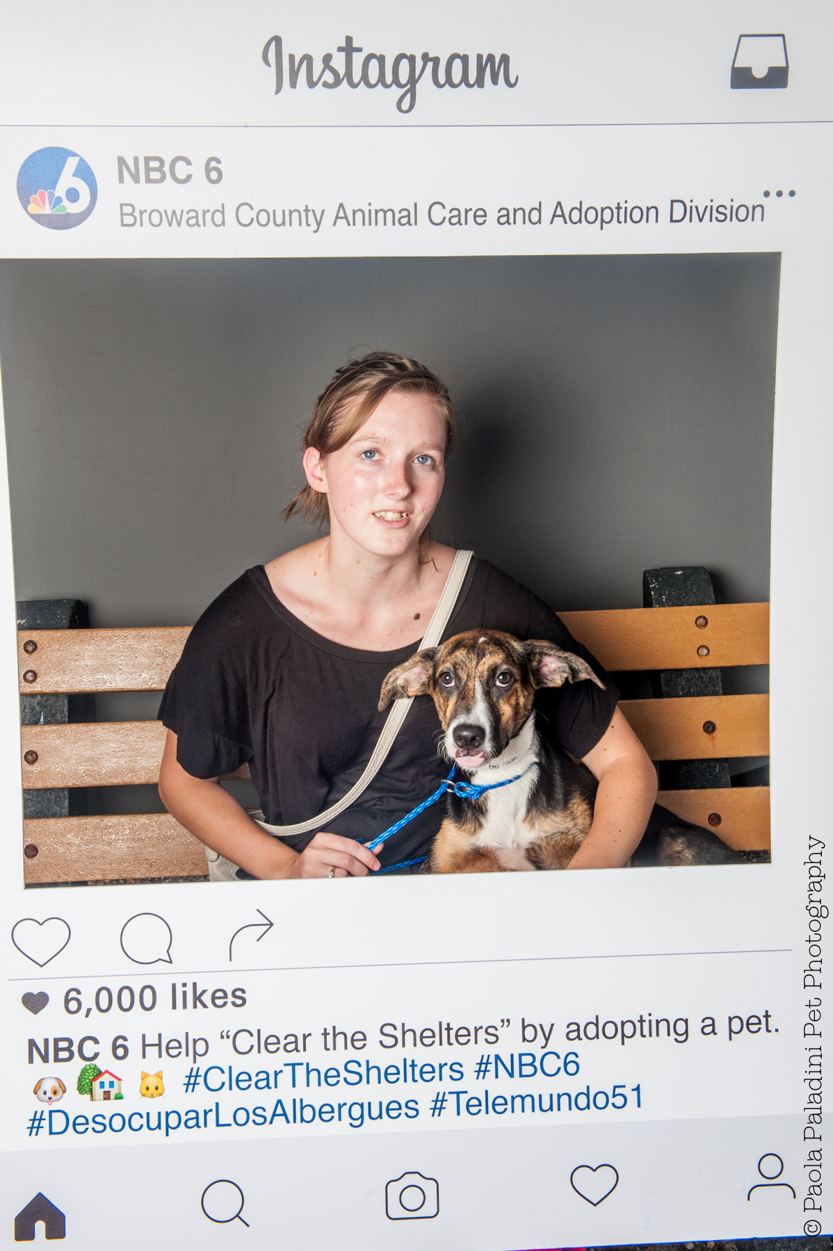 20160723-cleartheshelters-22.jpg