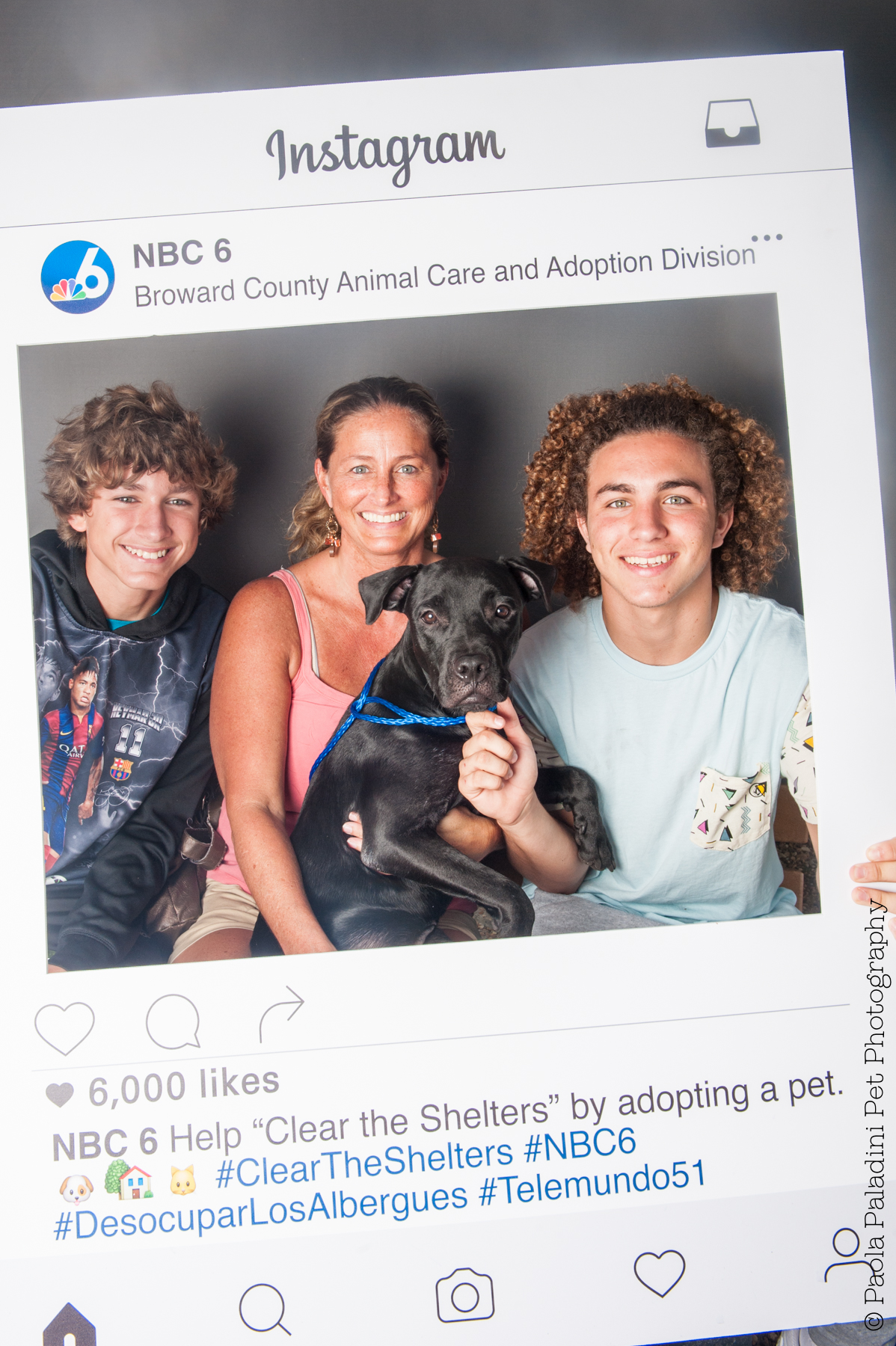 20160723-cleartheshelters-24.jpg