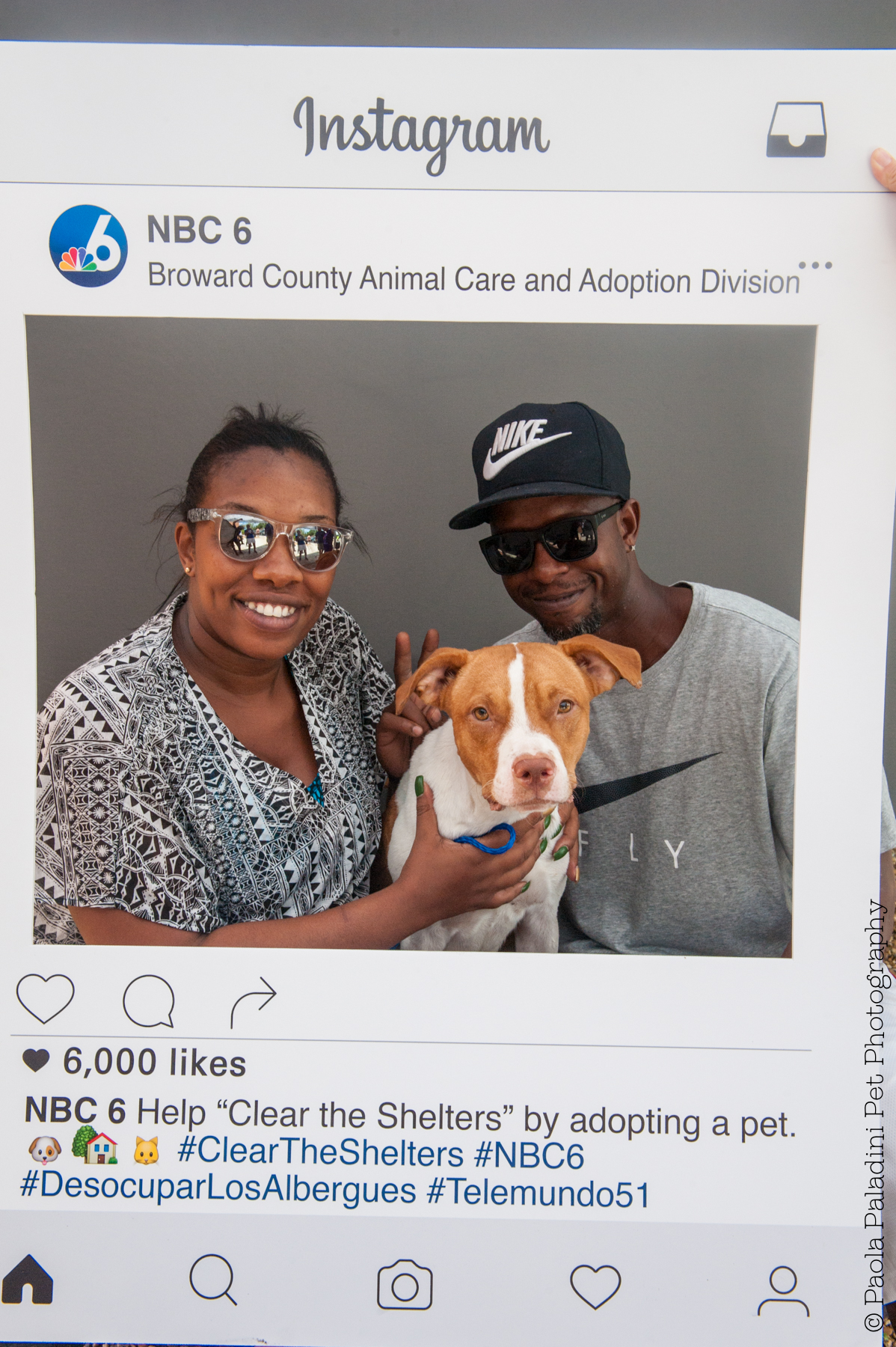 20160723-cleartheshelters-27.jpg