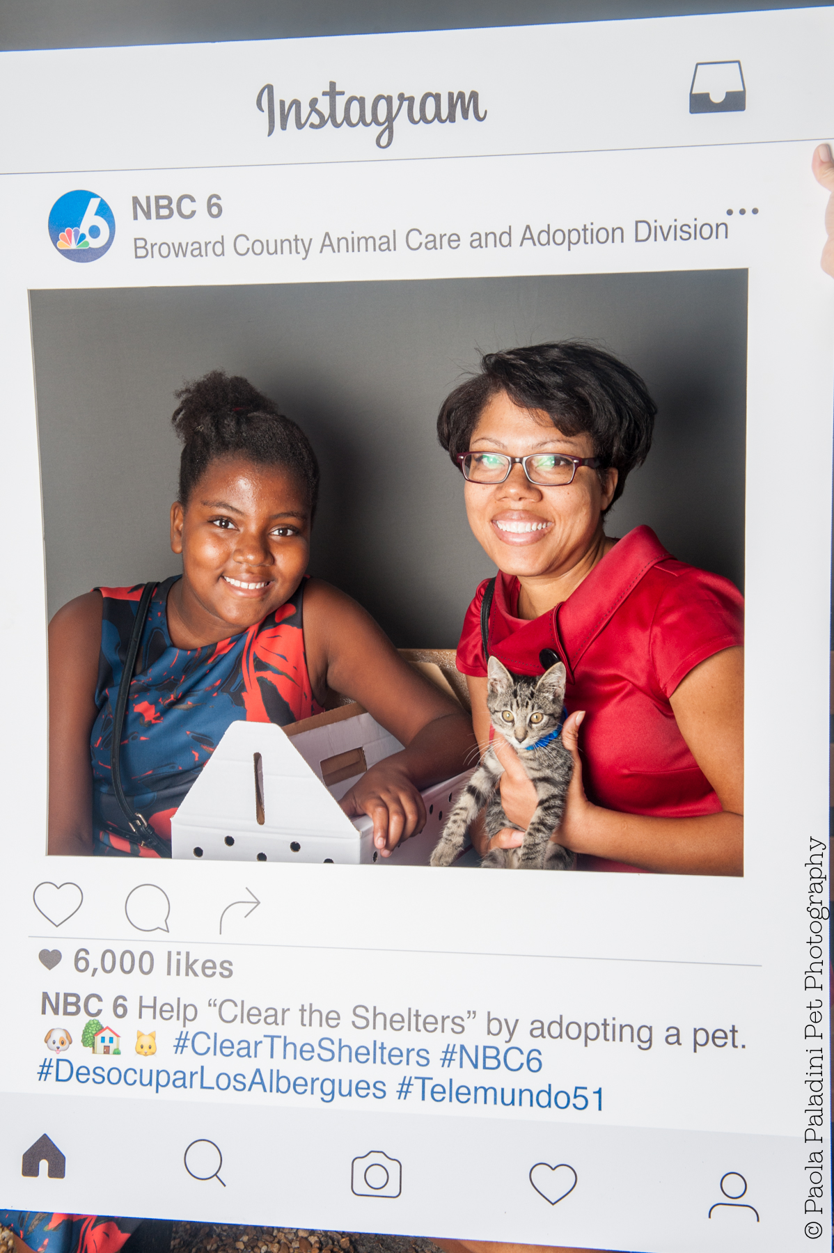 20160723-cleartheshelters-32.jpg