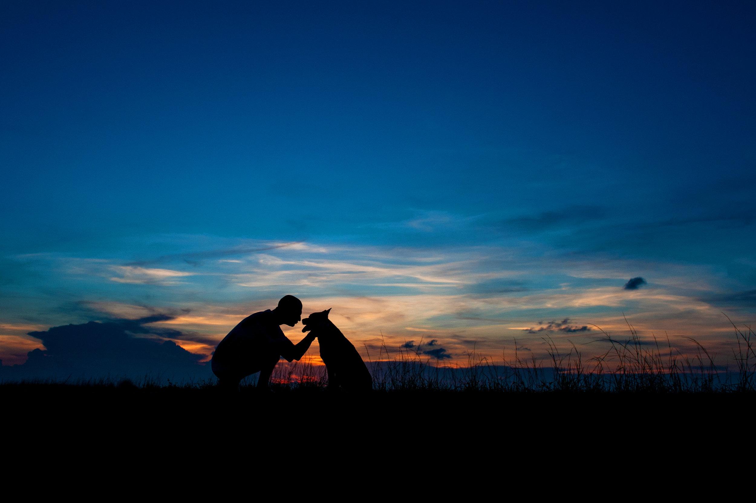 Paola-Paladini-Sunset-Silhouettes-Dog-Closeup