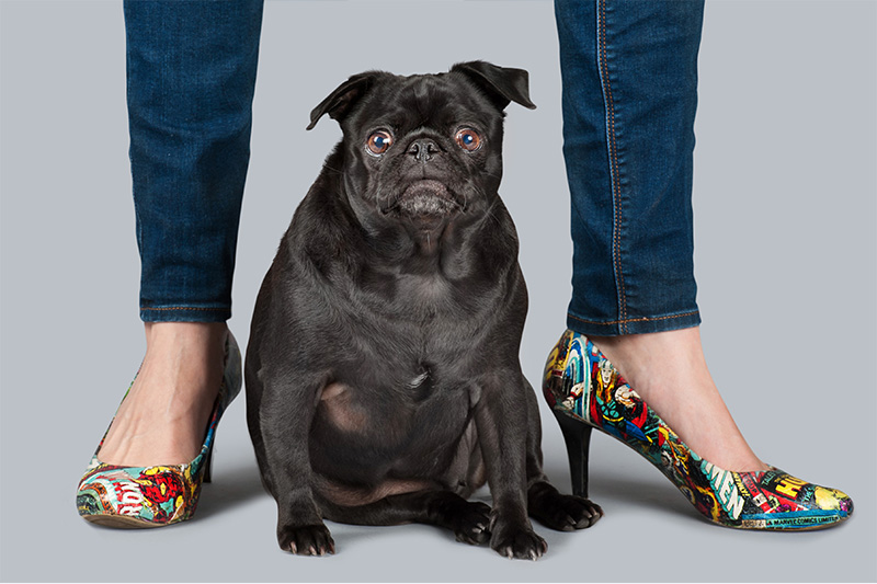 Paola-Paladini-Hounds-and-Heels-pug-super-heroes-shoes.jpg