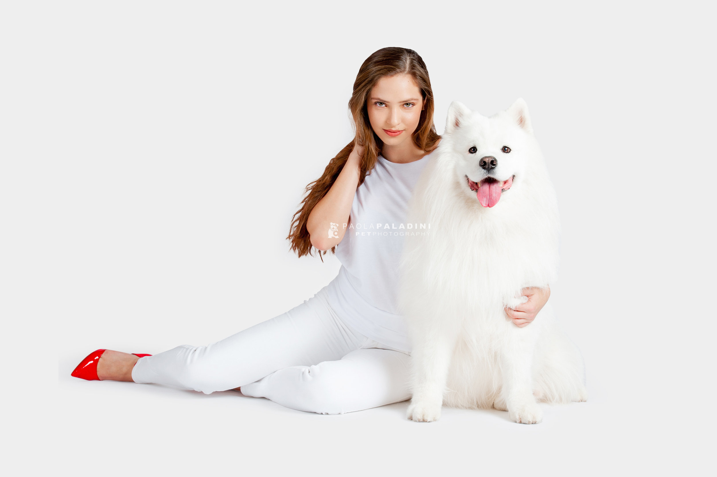 Paola-Paladini-White-on-White-Hounds-and-Heels-samoyed-2