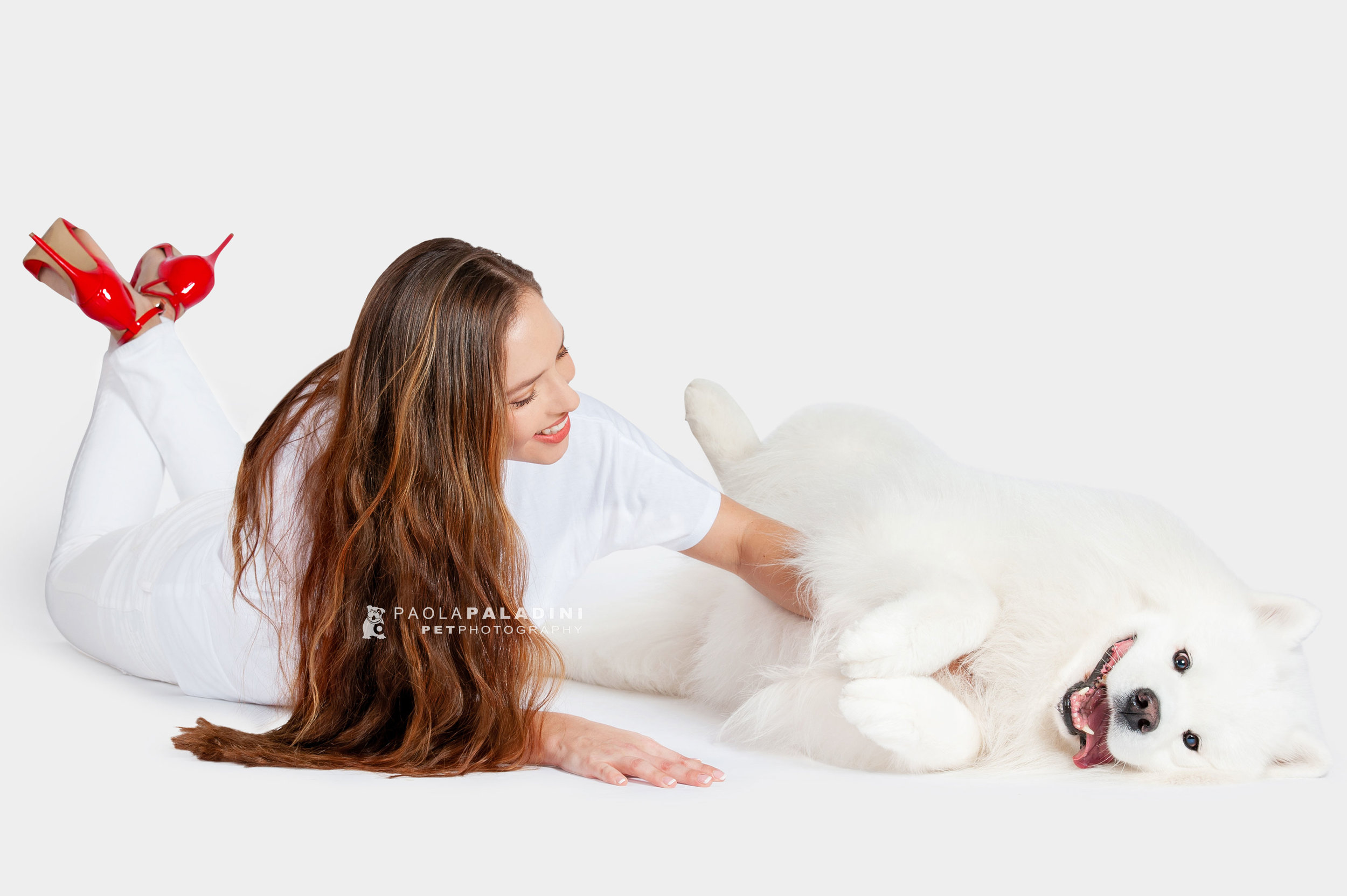 Paola-Paladini-White-on-White-Hounds-and-Heels-Samoyed-White-Dog