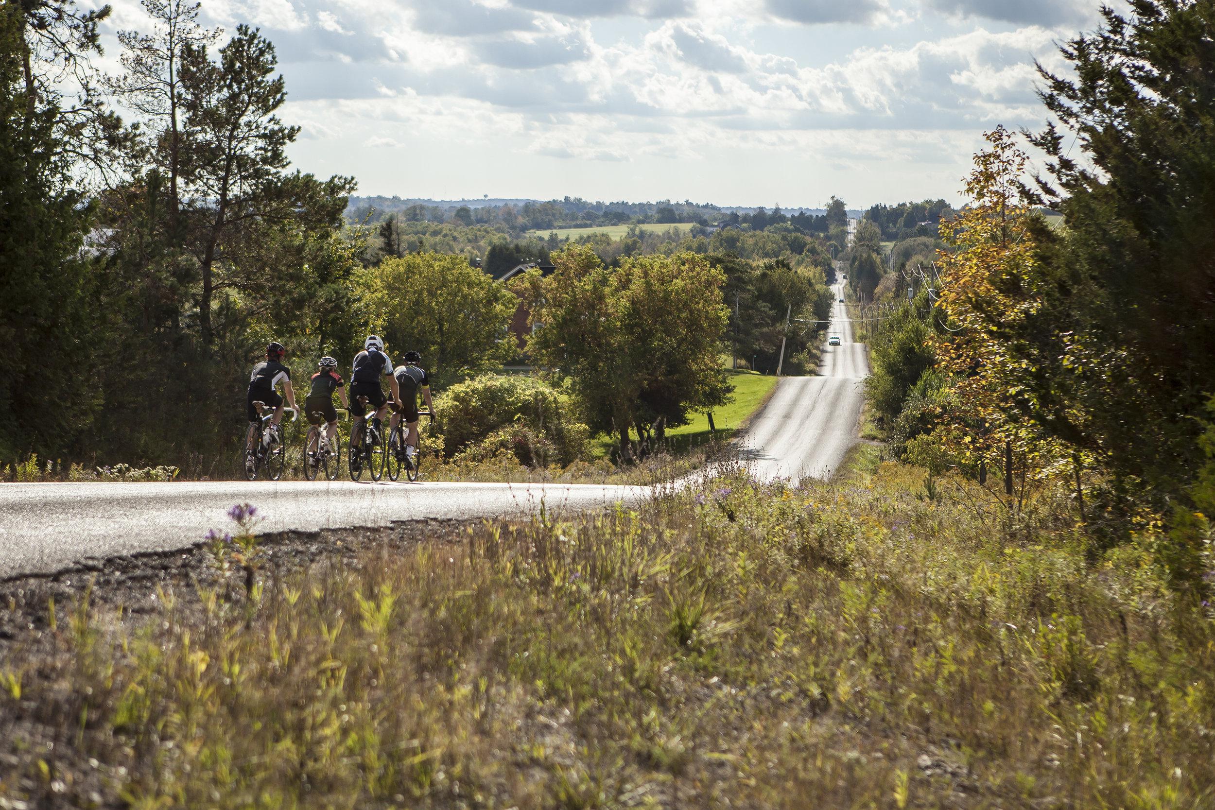 Road Cycling 1.jpg