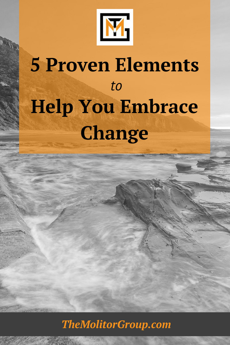 5 Proven Elements to Help You Embrace Change | Blog Post from The Molitor Group