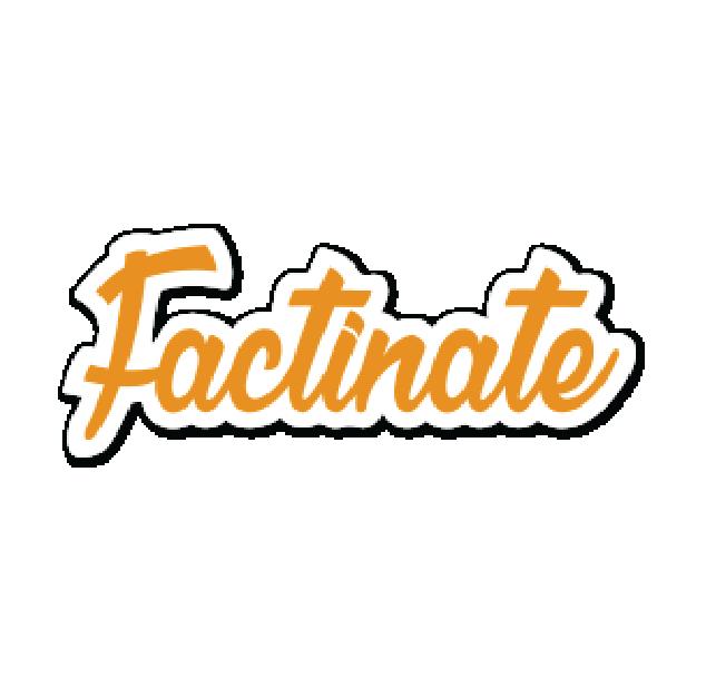 Customer Success - Factinate.png