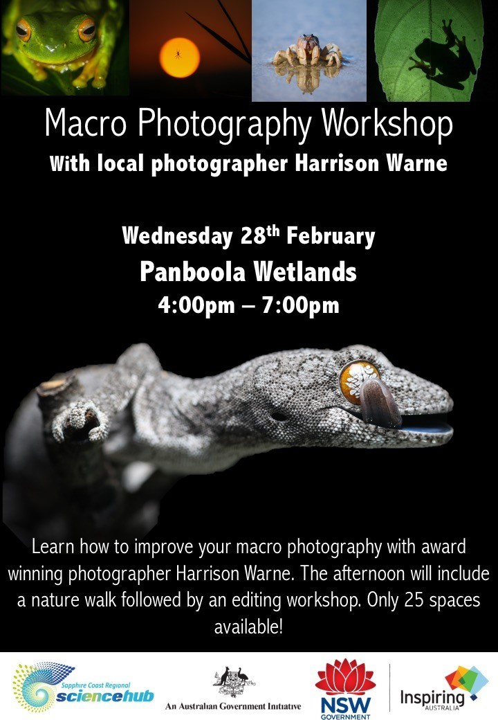 Macrophotography-workshop-final.jpg