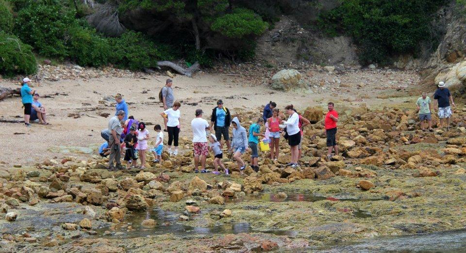 rocky-shore-ramble-shellys.jpg