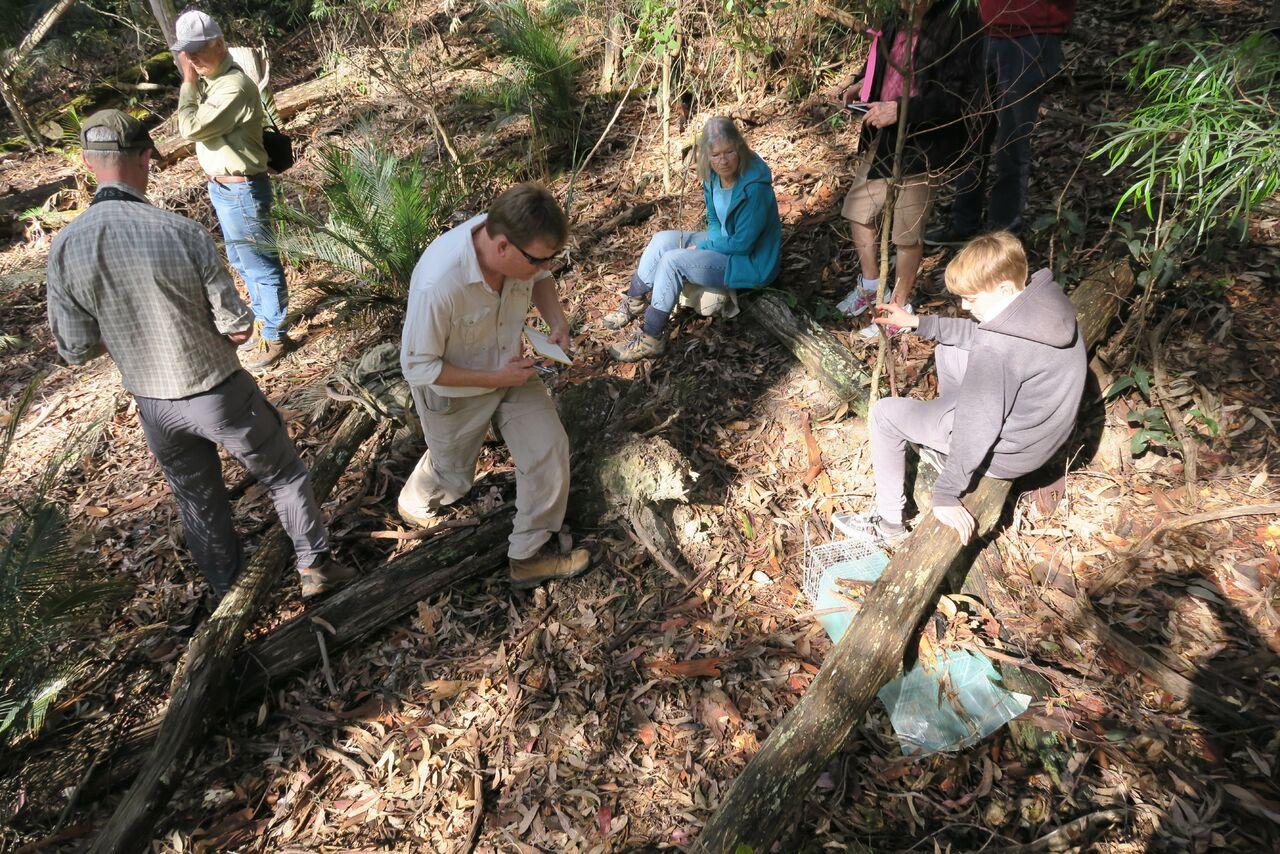 BioBlitzers helping Andrew Claridge at a small mammal survey