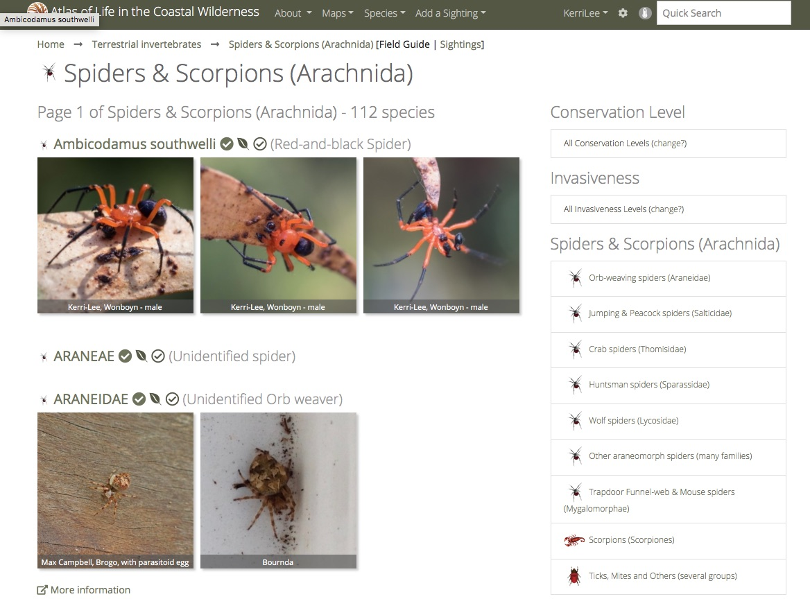 Click to open the  NatureMapr  database, showing the categories of arachnids.