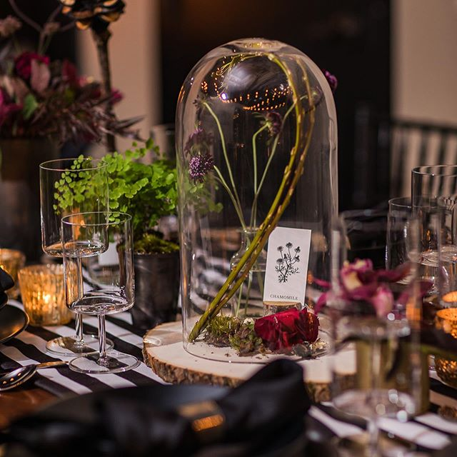 Loving these pics from Wedding Network Seattle October meeting!! I had a vision of Halloween- But NO orange. This team did an amazing job of interpreting my vision!  Thank you 🥂  PC Cred: @diwasphotography  Venue: @jmcellars  Florist: @floressencellc  Rentals: @pedersenseventrentals  Catering: @tuxedosandtennisshoes  Calligraphy: @caracolcreative  DJ: @adamtiegs  Valet: @butlerseattle  AV: @liveoakav  Desserts: @seatownsweets  @weddingnetworkseattle
