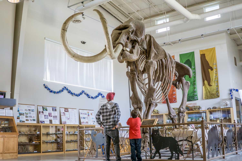 chowchilla-fossil-discovery-kim-lawson.jpg