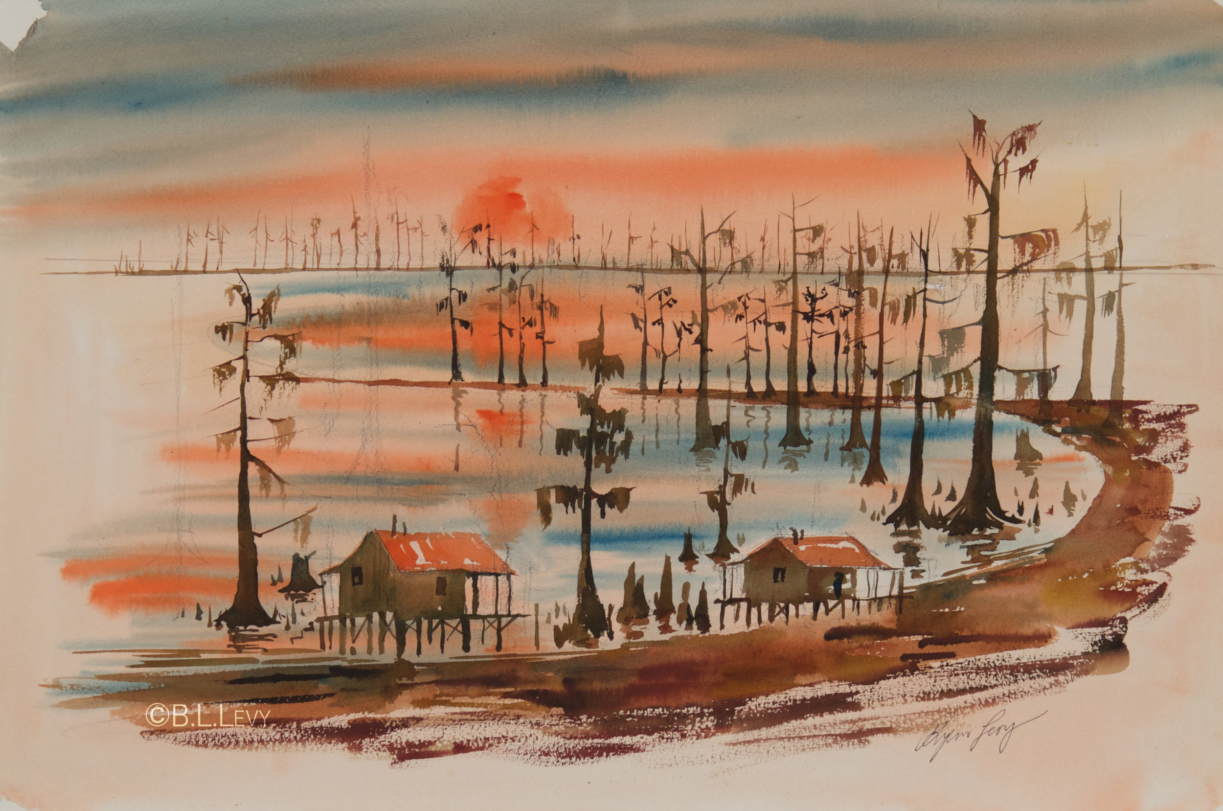 Louisiana swamp scene copy.jpg