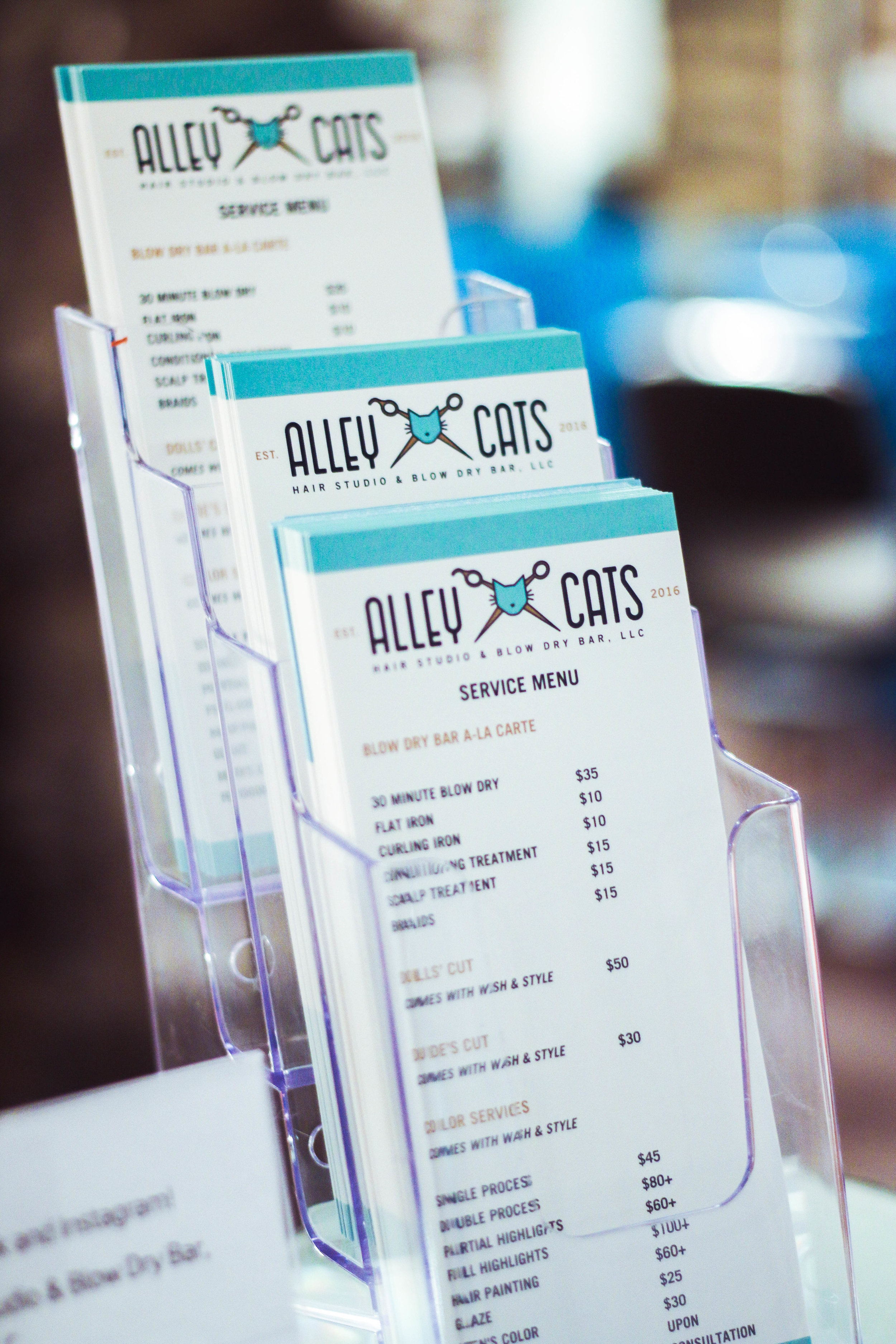 Alley Cats Hair Studio & Blow Dry Bar, LLC