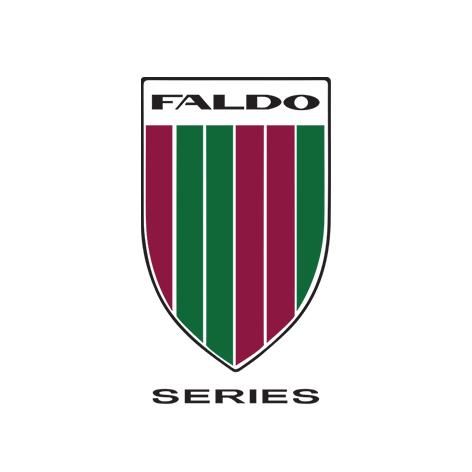 Faldo Series_Logo4x4cm.jpg