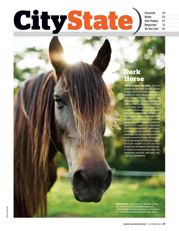 Horse-Play-RI.jpg