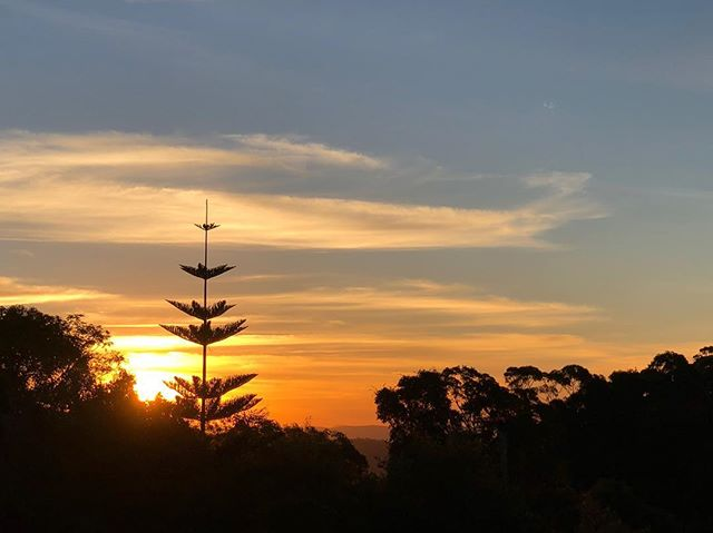 WINTER SUNSETS The last warmth of the day disappearing over Lamington National Park. Time to go inside a light a fire 🔥