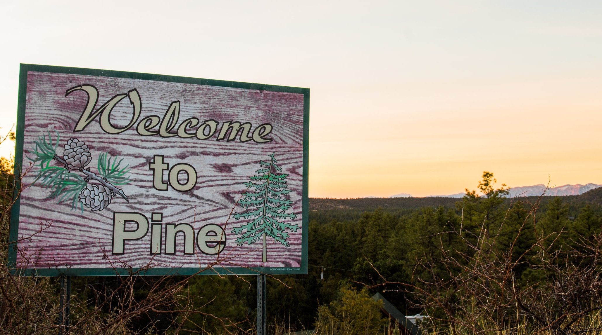 Pine Sign.jpg